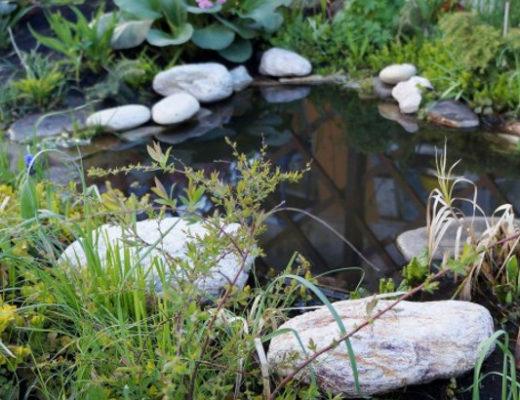 Как установить и оформить пластиковый пруд в саду. © Людмила Светлицкая