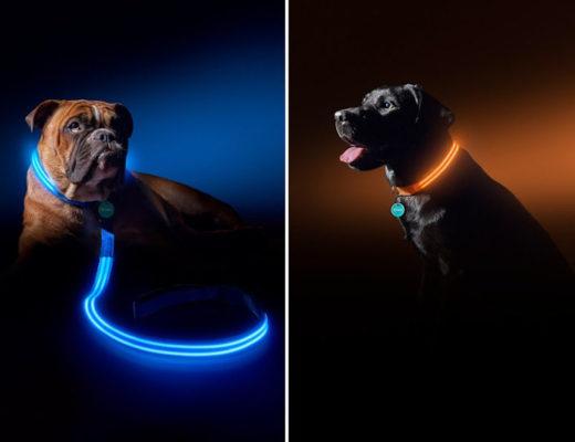 Светящийся поводок для собаки