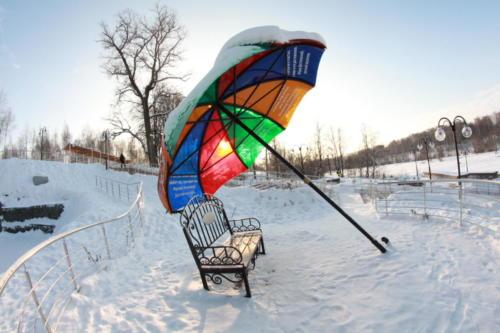Парк «Вальс цветов», зима 2020/2021 (фото: В.Кузьмин)