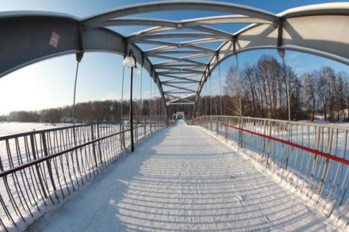 Парк «Сестрорецкий», зима 2020/2021 год (Фото В.Кузьмин)