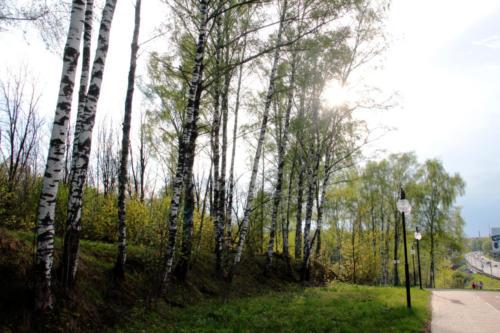 Природа Клина и района, весна (фото Василия и Дмитрия Кузьминых)