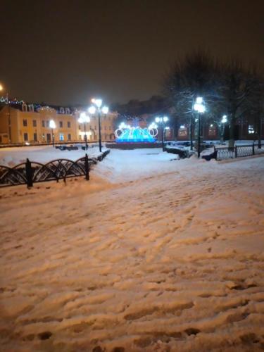 Фонтан «Девочка грибница», «Торговые ряды», зима 2020/2021 год (фото из архива сайта infoce-klin.ru)