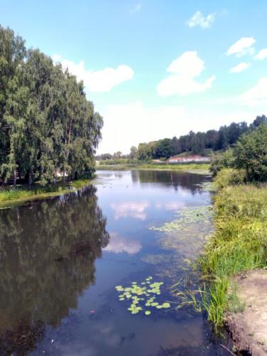 г.Клин, река Сестра (фото infoce-klin.ru, июнь 2021 года)