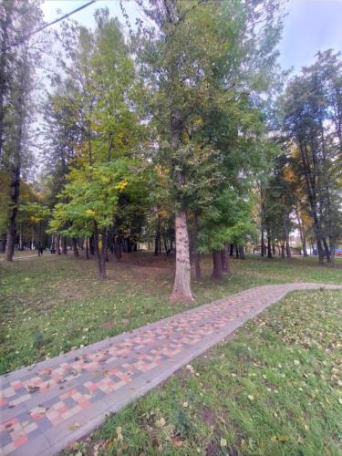 г.Клин, «Сестрорецкий» парк (фото из архива сайта infoce-klin.ru, октябрь, 2021)