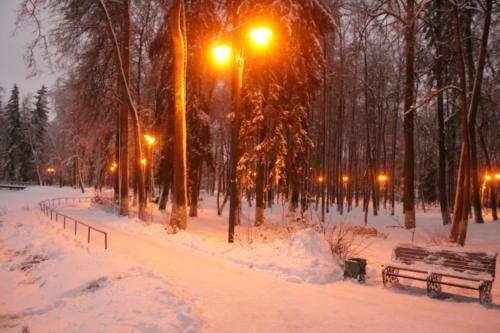 Майдановский парк (фото В.Кузьмин)