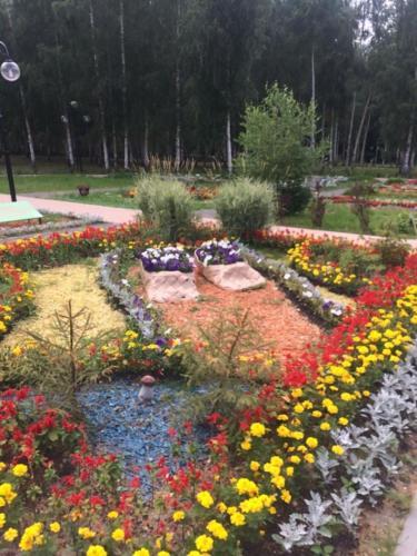 Парк «Вальс цветов», лето 2020 года (фото из архива сайта infoce-klin.ru, 2020 год)