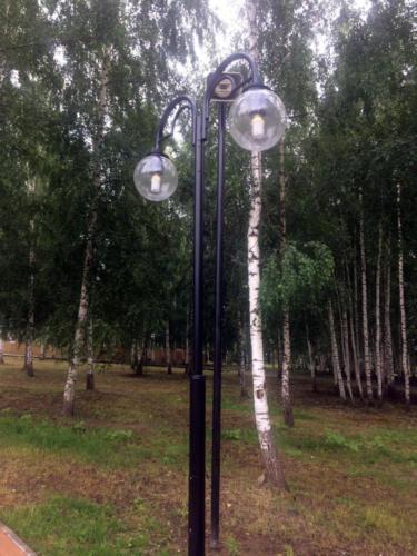 Парк «Вальс цветов», г. Клин (фото из архива сайта infoce-klin.ru, 2020 год)