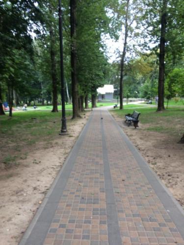 Парк «Сестрорецкий», лето 2020 года (фото из архива сайта infoce-klin.ru, 2020 год)