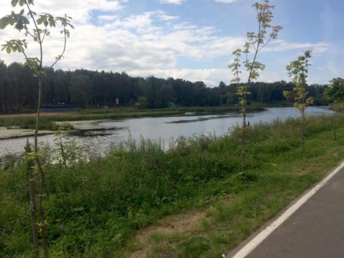 г.Клин, река Сестра (фото из архива сайта infoce-klin.ru, 2020 год)